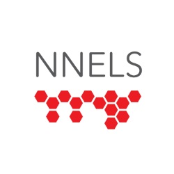 National Network for Equitable Library Service (NNELS)